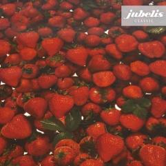 Wachstuch Strawberries H
